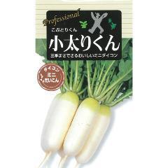 【エントリーでポイント5倍】大根 種 【小太りくん】 小袋 ( 種 野菜 野菜種子 野菜種 )