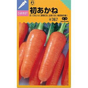 にんじん 種 【初あかね】 小袋 ( 種 野菜 野菜種子 野菜種 )