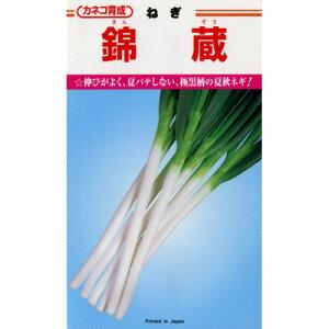 ネギ 種 【 ネギ錦蔵 】 種子 小袋(約20ml) ( 種 野菜 野菜種子 野菜種 )