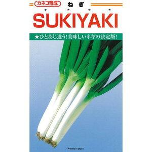 ネギ 種 【 ネギSUKIYAKI 】 種子 コート5千粒 ( 種 野菜 野菜種子 野菜種 )