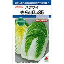 白菜 種 【 きらぼし85 】 種子 L5千粒 ( 種 野菜 野菜種子 野菜種 )