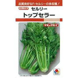 セルリー 種 【 トップセラー 】 種子 20ml ( 種 野菜 野菜種子 野菜種 )