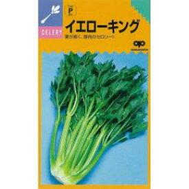 セルリー 種 【 イエローキング 】 種子 小袋(約1.5ml) ( 種 野菜 野菜種子 野菜種 )