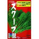 ホウレンソウ 種 【 スクープ 】 種子 プライミング3万粒 ( 種 野菜 野菜種子 野菜種 )