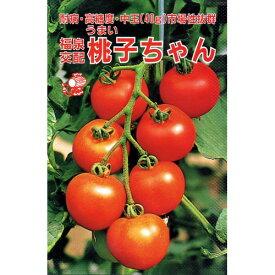 中玉トマト 種 【桃子ちゃん】 0.3ml ( 種 野菜 野菜種子 野菜種 )