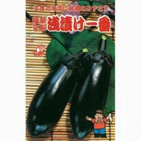 なす 種 【浅漬一番】 10ml ( 種 野菜 野菜種子 野菜種 )