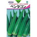 オクラ 種 【ペンタゴン】 約5ml ( 種 野菜 野菜種子 野菜種 )
