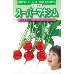 廿日大根 種 【 スーパーマキシマム 】 種子 2dl缶 ( 種 野菜 野菜種子 野菜種 )