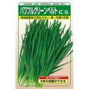にら 種 【 パワフルグリーンベルト 】 種子 2dl ( 種 野菜 野菜種子 野菜種 )