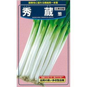 ネギ 種 【 ネギ秀蔵 】 種子 コート2L5千粒 ( 種 野菜 野菜種子 野菜種 )