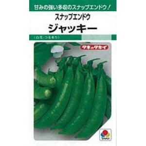 スナップエンドウ 種 【ジャッキー】 1dl ( 種 野菜 野菜種子 野菜種 )