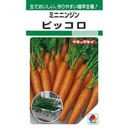 にんじん 種 【 ピッコロ 】 種子 約1dl ( 種 野菜 野菜種子 野菜種 )
