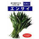 【 つるなしエンサイ (空芯菜) 】 種子 小袋(約20ml) ( 種 野菜 野菜種子 野菜種 )