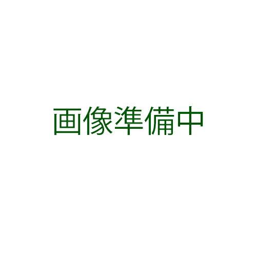 大根 種 【 YR-鉄人 】 種子 小袋(約20ml) ( 種 野菜 野菜種子 野菜種 )