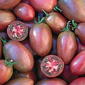 紫トマト種小袋(20粒)【野菜のタネ実ものトマト】