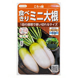 【エントリーでポイント5倍】ダイコン 種 【 ころっ娘 】 実咲小袋 ( 種 野菜 野菜種子 野菜種 )