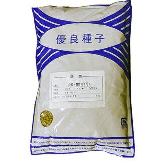 小麦農林61号 (雑穀の種) 1kg