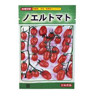 ミニトマト 種 【ノエルトマト】 30粒 ( 種 野菜 野菜種子 野菜種 )
