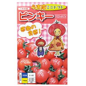 ミニトマト 種 【ピンキー】 20粒 ( 種 野菜 野菜種子 野菜種 )