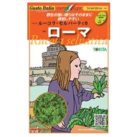 ルーコラ 種 【 セルバーティカ ローマ 】 約500粒 ( 種 野菜 野菜種子 野菜種 )