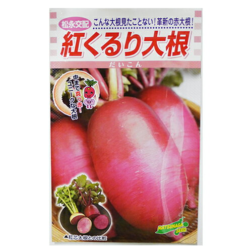 【エントリーでポイント5倍】大根 種 【紅くるり】 3ml ( 種 野菜 野菜種子 野菜種 )