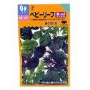 ベビーリーフ 種 【 菜っぱミックス 】 種子 小袋 ( 種 野菜 野菜種子 野菜種 )