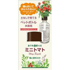 おうちde育てるペットボトル栽培 ミニトマト 種子 水栽培セット