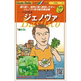 バジル 種【 ジェノヴァ 】小袋(約80粒)( 野菜種 西洋野菜 グストイタリア )