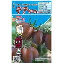 ミニトマト 種 【 チアちゃん 】 8粒 ( 種 野菜 野菜種子 野菜種 )