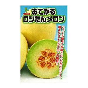 メロン種【おてがるロジたん】小袋(10粒)(メロンの種)