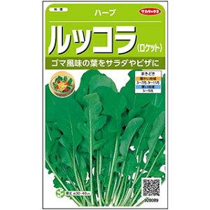 ハーブ種【ルッコラ】実咲小袋(ハーブの種)