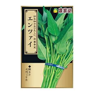 中国野菜 種 【 エンツァイ 】 小袋 ( 中国野菜の種 )