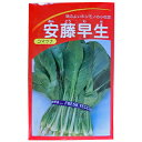 小松菜 種 【安藤早生小松菜】 小袋 ( 種 野菜 野菜種子 野菜種 )