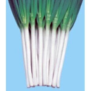ネギ 種 【 ネギ白林(はくりん) 】 種子 小袋(4ml) ( 種 野菜 野菜種子 野菜種 )