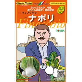 フィノッキオ(フローレンスフェンネル) 種【 ナポリ 】小袋(約80粒)( 野菜種 西洋野菜 グストイタリア )