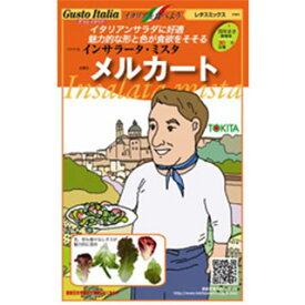 レタスミックス 種【 メルカート 】小袋( 野菜種 西洋野菜 グストイタリア )