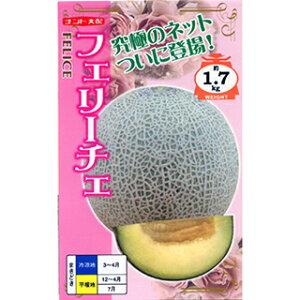 メロン 種 【 フェリーチェ 】 小袋(6粒) ( メロンの種 )