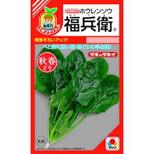 ほうれん草 種 【 福兵衛 RF 】 小袋(45ml エボプライム種子) ( ほうれん草の種 )
