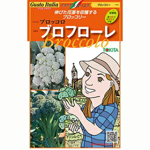 ブロッコリー 種 【 ブロフローレ(65日タイプ) 】 小袋 ( ブロッコリーの種 )