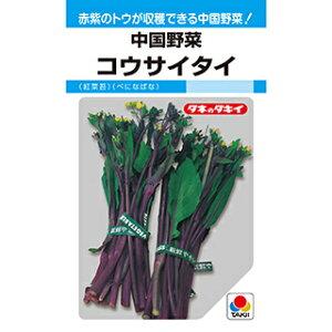 中国野菜 種 【 コウサイタイ 紅菜苔 MF 】 小袋(10ml) ( 中国野菜の種 )