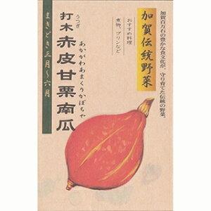 カボチャ 種 【 加賀野菜 打木赤皮甘栗南瓜 】 1L ( カボチャの種 )