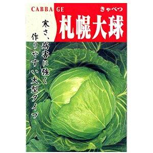 キャベツ 種 【 札幌大球(4号) 】 小袋 ( キャベツの種 )