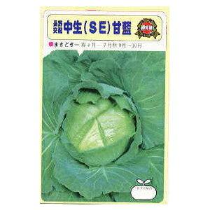 キャベツ 種 【 SE 】 小袋 ( キャベツの種 )