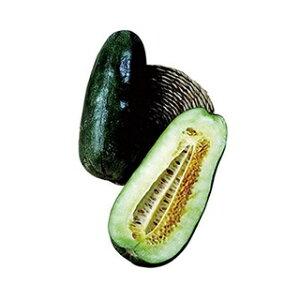 ウリ 種 【 くろうり 】 種子 小袋(約10ml) ( 種 野菜 野菜種子 野菜種 )