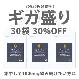 【30%OFF】noi ガニアシ サプリ 30袋セット