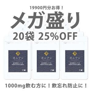 【25%OFF】noiガニアシサプリ20袋セット