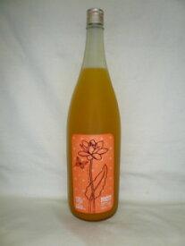 フルフル 完熟マンゴー梅酒 1800ml 9度 [山口合名 福岡県 梅酒 日本酒ベース マンゴー仕込み]