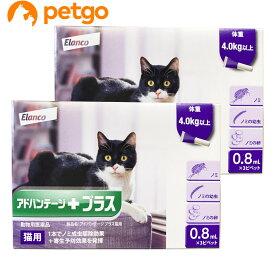 【2箱セット】アドバンテージプラス 猫用 0.8mL 4kg以上 3ピペット(動物用医薬品)【あす楽】