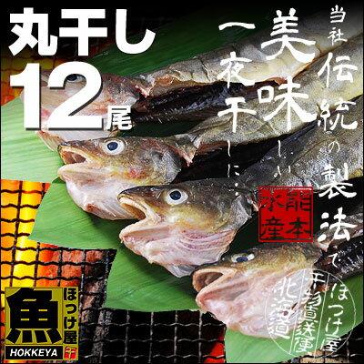 北海道産 丸干しこまい 一夜干し 12尾 (4尾×3串)