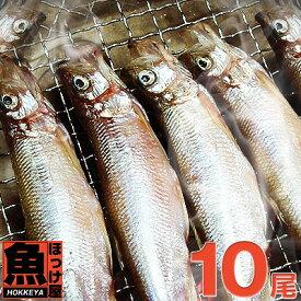 北海道(広尾産)ししゃもメス 特大サイズ 10尾 【本ししゃも】6Lサイズ